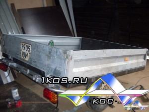 SDC11917 (1)